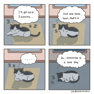 [OC] Productivity: I'll get up in  5 minutes.  Just one more  hour, that's t  2  Eh...tomorrow is  a new doy  수지 @catncat comics [OC] Productivity