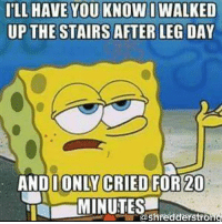 So like... Yeah. I'm pretty bad ass.: ILL HAVE YOU KNOW I WALKED  UP THE STAIRS AFTER LEG DAY  AND I ONLY CRIED FOR 20  MINUTES  shredderstrong So like... Yeah. I'm pretty bad ass.