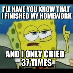 If you are a student Follow @studentlifeproblems: ILL HAVE YOU KNOW THAT  IFINISHED MY HOMEWORK  ANDDONLYCRIED  37TIMES  Ne If you are a student Follow @studentlifeproblems