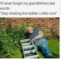 "Memes, 🤖, and The Ladders: I'll never forget my grandfathers last  words:  ""Stop shaking the ladder u little cunt"" Snapchat: Dankmemesgang 🐥"