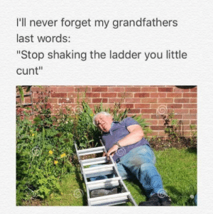 """Cunt, Last Words, and Never: I'll never forget my grandfathers  last words:  """"Stop shaking the ladder you little  cunt"""""""