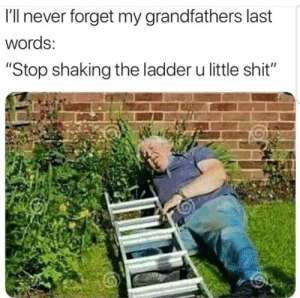 """Old but gold by cheeki_hamiltrash FOLLOW 4 MORE MEMES.: I'll never forget my grandfathers last  words:  """"Stop shaking the ladder u little shit"""" Old but gold by cheeki_hamiltrash FOLLOW 4 MORE MEMES."""