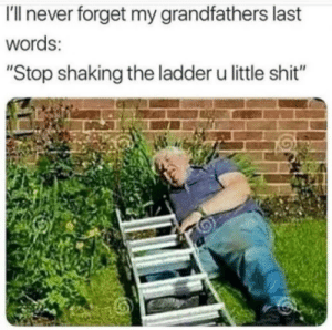 "Memes: I'll never forget my grandfathers last  words:  ""Stop shaking the ladder u little shit"" Memes"