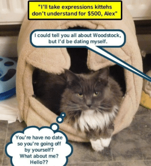 "Dating, Hello, and Date: ""I'll take expressions kittehs  don't understand for $500, Alex""  I could tell you all about Woodstock,  but l'd be dating myself  You're have no date  so you're going off  by yourself?  What about me?  Hello??"
