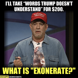 "Memes, Trump, and What Is: I'LL TAKE ""WORDS TRUMP DOESNT  UNDERSTAND"" FOR $200.  MAKE AM  GREATAG  WHAT IS ""EXONERATEP""  OCCUPY DEMOCRATS 😂"