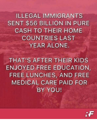 Being Alone, Memes, and Free: ILLEGAL IMMIGRANTS  SENT $56 BILLION IN PURE  CASH TO THEIR HOME  COUNTRIES LAST  YEAR ALONE  THAT'S AFTER THEIR KIDS  ENJOYED FREE EDUCATION  FREE LUNCHES, AND FREE  MEDICAL CARE PAID FOR  BY YOU!