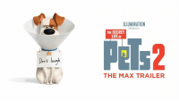 Just when you think you've got them figured out. Watch the Max trailer for #TheSecretLifeofPets2.: ILLUMINATION  PRESENTS  THE SECRET  LIFE oF  Pels2  ele  on't lav  THE MAX TRAILER Just when you think you've got them figured out. Watch the Max trailer for #TheSecretLifeofPets2.