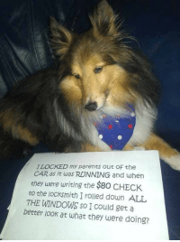 <p>Best Case Of Dog Shaming.</p>: ILOCKED my parents out Of the  CAR as it was RUNNING and when  they were writing the $80 CHECK  to the locksmith I rolled down ALL  THE WINDOWS so I Could get a  better look at what they were doing? <p>Best Case Of Dog Shaming.</p>
