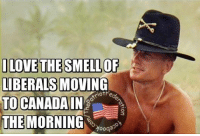 Memes, Canada, and Liberalism: ILOVE THE SMELLOF  LIBERALS MOVING  riotHe  TO CANADA  IN  O  THE MORNING  Yoogaso