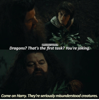 = Like & Comment! 📌 QOTD: What's your name? = Memory Of The Day: November 22, 1994: Just after midnight, Hagrid takes Harry to see dragons that would be used for the First Task of the Triwizard Tournament. = You can find me on @bookgasms @typedpotterquotes @mypotterfacts and @valeriatouma 🚂⚡️: @iloveharrypotter9  Dragons? That's the first task? You're joking.  Come on Harry. They're seriously misunderstood creatures. = Like & Comment! 📌 QOTD: What's your name? = Memory Of The Day: November 22, 1994: Just after midnight, Hagrid takes Harry to see dragons that would be used for the First Task of the Triwizard Tournament. = You can find me on @bookgasms @typedpotterquotes @mypotterfacts and @valeriatouma 🚂⚡️