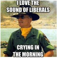 Crying, Memes, and 🤖: ILOVETHE  SOUND OF LIBERALS  CRYING IN  THE MORNING Dayyumm! Sounds so sweet.