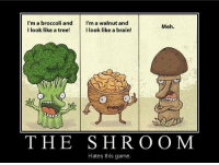 Lol - Kittykat: I'm a broccoli and  I'm a walnut and  Meh.  I look like a tree!  I look like a brain!  THE S H R O O M  Hates this game. Lol - Kittykat
