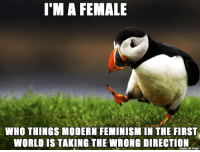 Probably not that unpopular actually: I'M A FEMALE  WHO THINGS MODERN FEMINISM IN THE FIRST  WORLD IS TAKING THE WRONG DIRECTION  made on imgu Probably not that unpopular actually