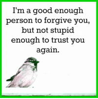 Memes, 🤖, and You Again: I'm a good enough  person to forgive you,  but not stupid  enough to trust you  again