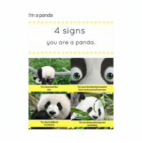 😂😂😂(@sassygirl38): I'm a panda  4 signs  you are a panda.  You sleep halfthe  day  You have developed permanent  blackcirclesaroundyour eyes  You findit difficult  to interact  Y alwayschewingonto  ou are 😂😂😂(@sassygirl38)