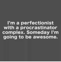 Complex, Girl Memes, and Awesome: I'm a perfectionist  with a procrastinator  complex. Someday I'm  going to be awesome. Someday...