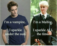 B*tch please  -Kreacher: I'm a vampire  I'm a Malfo  I sparkle ALL  I sparkle  under the s  the tim B*tch please  -Kreacher