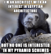 """Advice, Tumblr, and Animal: IM AN ARCHITECT WITHAN  INTEREST IN EGYPTIAN  ARCHITECTURE  BUT  NO ONE IS INTERESTED  IN MY PYRAMID SCHEMES  made on imgur <p><a href=""""http://advice-animal.tumblr.com/post/166979172538/i-wonder-why"""" class=""""tumblr_blog"""">advice-animal</a>:</p>  <blockquote><p>I wonder why</p></blockquote>"""
