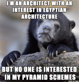 Advice, Tumblr, and Animal: IM AN ARCHITECT WITHAN  INTEREST IN EGYPTIAN  ARCHITECTURE  BUT  NO ONE IS INTERESTED  IN MY PYRAMID SCHEMES  made on imgur advice-animal:  I wonder why