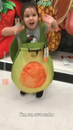 """Life, Avocado, and You: I'm an avocado """"What do you want to be in life?""""  Me:"""