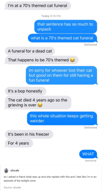 But why 70s?: I'm at a 70's themed cat funeral  Today 9:18 PM  that sentence has so much to  unpack  what is a 70's themed cat funeral  Delivered  A funeral for a dead cat  That happens to be 70's themed e  im sorry for whoever lost their cat  but good on them for still having a  fun funeral  It's a bop honestly  The cat died 4 years ago so the  grieving is over E  this whole situation keeps getting  weirder  Delivered  It's been in his freezer  For 4 years  WHAT  Delivered  ufocafe  so i asked a friend what was up and she replied with this and i feel like i'm in an  episode of the twilight zone  Source: ufocafe But why 70s?