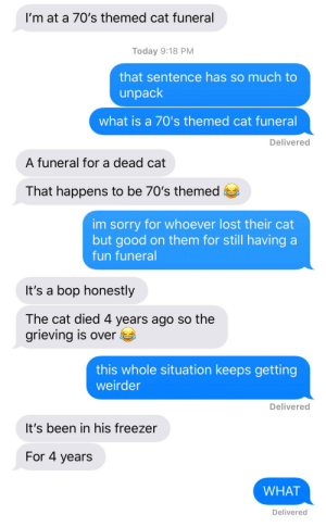 Sorry, Target, and Tumblr: I'm at a 70's themed cat funeral  Today 9:18 PM  that sentence has so much to  unpack  what is a 70's themed cat funeral  Delivered  A funeral for a dead cat  That happens to be 70's themed   im sorry for whoever lost their cat  but good on them for still having a  fun funeral  It's a bop honestly  The cat died 4 years ago so the  grieving is over  this whole situation keeps getting  weirder  Delivered   It's been in his freezer  For 4 years  WHAT  Delivered ufocafe: so i asked a friend what was up and she replied with this and i feel like i'm in an episode of the twilight zone