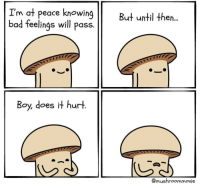 Bad, Wholesome, and Peace: I'm at peace knowing  bad feelings will pass.  But until then..  Boy, does it hurt  @mushroommovie I dont why, but found this pretty wholesome via /r/wholesomememes https://ift.tt/2xi1VGI