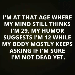 Memes, Mind, and Asking: I'M AT THAT AGE WHERE  MY MIND STILL THINKS  l'M 29, MY HUMOR  SUGGESTS I'M 12 WHILE  MY BODY MOSTLY KEEPS  ASKING IF I'M SURE  I'M NOT DEAD YET.