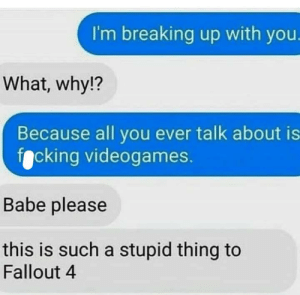 meirl by hippotailla MORE MEMES: I'm breaking up with you.  What, why!?  Because all you ever talk about is  focking videogames.  Babe please  this is such a stupid thing to  Fallout 4 meirl by hippotailla MORE MEMES