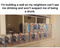 Dank, 🤖, and Walle: I'm building a wall so my neighbors can't see  me drinking and won't suspect me of being  a drunk.  ibbon
