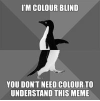 Meme, Grass, and You: I'M COLOUR BLIND  YOU DON'T NEED COLOUR TO  UNDERSTAND THIS MEME The grass is always oranger on the other side.