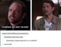 Accurate :') ~Nathouツ: I'M CONFUSED WHY ARENTYOU DEAD?  supernaturaldeansavesammy:  mustard-dont-be-silly:  basically supernatural in a nutshell  accurate  DONT KNOW Accurate :') ~Nathouツ