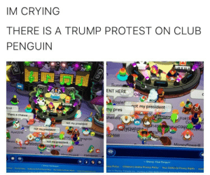 Club, Crying, and Disney: IM CRYING  THERE IS A TRUMP PROTEST ON CLUB  PENGUIN  Sunn  ENT HERE  Rosie  my pres  hekéls  t my president  15  h lol  laliamar  Yoki3  thers a chance  not my president  14  03heb  ake  Di  not my president  is  Ayat 2018  468  6  oki3  Monevflower8  kels  not my president  Jass2468  Disney Club Penguin  acy Policy  Children's Online Privacy Policy 1 Your California Privacy Rights I supp  site is Disney Caneda paralol:  bang:  NOT MY PREZ   This is why club penguin is getting shut down