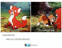 hound dogs: I'm fox!  I'm a hound dog!  ruined childhood2  #AND I'M A CRYING DISASTER  Ef Postize