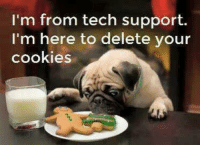 Funny... I don't recall, calling for Tech Support?? Hmmm 🤔😜: I'm from tech support.  I'm here to delete your  cookies Funny... I don't recall, calling for Tech Support?? Hmmm 🤔😜