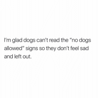 "Dogs, Memes, and Sad: I'm glad dogs can't read the ""no dogs  allowed"" signs so they don't feel sad  and left out. Yas!"