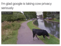 Thanks google: I'm glad google is taking cow privacy  seriously  Street View-Aug 2015 Thanks google