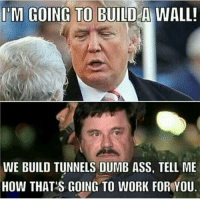 @mexican_mamadas freeelchapo fucktrump wall wegotthis tunnels dumbass donaldtrump lmao: IM GOING TO BUILD A WALL!  WE BUILD TUNNELS DUMB ASS, TELL ME  HOW THAT'S GOING TO WORK FOR YOU @mexican_mamadas freeelchapo fucktrump wall wegotthis tunnels dumbass donaldtrump lmao