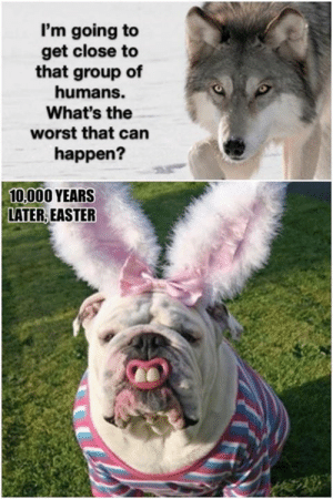 Dank, Easter, and The Worst: I'm going to  get close to  that group of  humans.  What's the  worst that can  happen?  10,000 YEARS  LATER, EASTER