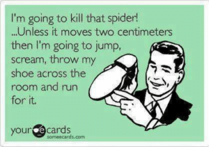 lol-support:  How to Kill a Spider: I'm going to kill that spider!  .Unless it moves two centimeters  then l'm going to jump,  scream, throw my  shoe across the  room and run  for it.  yource cards  someecards.com lol-support:  How to Kill a Spider