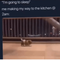 """Memes, Time, and Sleep: """"I'm going to sleep""""  me making my way to the kitchen @  2am every dang time 😩😂😂"""