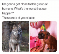 The Worst, Can, and Group: I'm gonna get close to this group of  humans. What's the worst that can  happen?  Thousands of years later:  DEY NOT.Z0EY Poor doggos