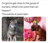 The Worst, Can, and Group: I'm gonna get close to this group of  humans. What's the worst that can  happen?  Thousands of years later: Poor doggos