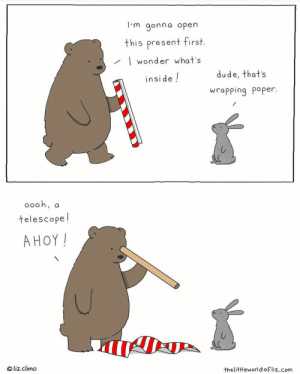 really recommend this artist! always puts a smile on my face: I'm gonna open  this present first.  | wonder what's  dude, that's  inside !  wrapping paper.  0ooh, a  telescope!  AHOY!  © liz climo  thelittleworldofliz.com really recommend this artist! always puts a smile on my face