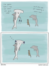 Liz Climo: I'm gonna  take a nap  All catch  You guys  later  liz Climo  a it wh  are  you holding a  bikini top?  lizclimo. tumblr com