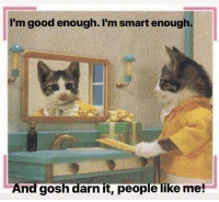 Good, Cat, and Smart: I'm good enough. I'm smart enough  And gosh darn it, people like me! Stuart Smalley + Cat in a Jacket