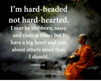 Memes, Rude, and Heart: I'm hard-headed  not hard-hearted.  I may be stubborn, sassy,  and rude at times but I  have a big heart and care  about others more than  I should.  com