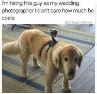 Wedding, Dank Memes, and How: I'm hiring this guy as my wedding  photographer I don't care how much he  costs  QCabbageCatMemes @doggosdoingthings