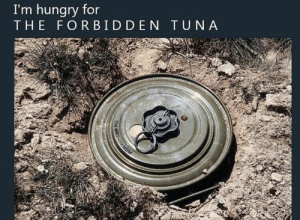 Hungry, Irl, and Me IRL: I'm hungry for  THE FORBID DEN TUNA Me_irl : me_irl