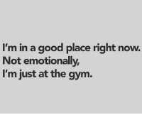 Gym, Memes, and Good: I'm in a good place right now.  Not emotionally  I'm just at the gym 🙋‍♂️🙋‍♂️🙋‍♂️